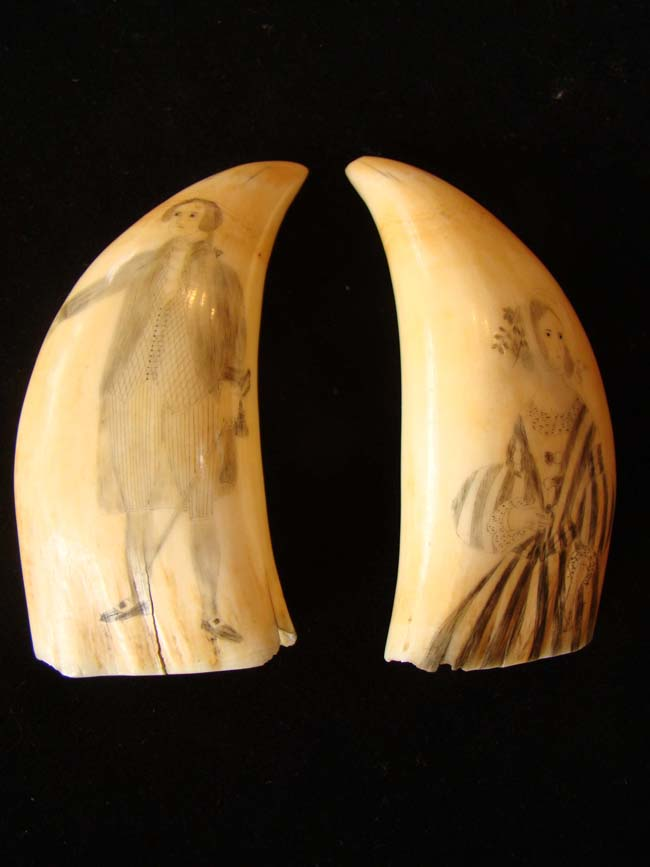 click to view larger image of A beautiful pair of 19th century scrimshawed whale's teeth