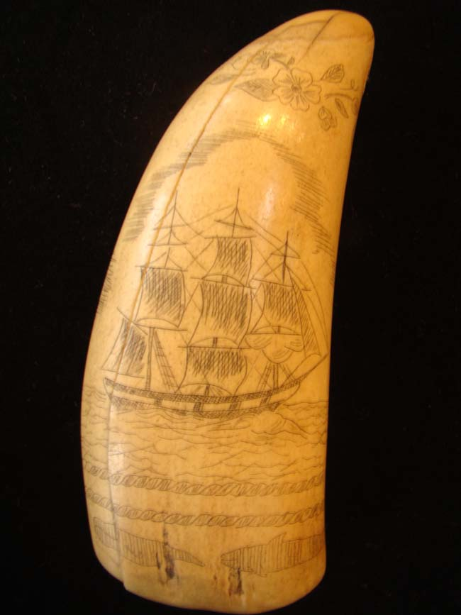 click to view larger image of A late 19th or early 20th century whale's tooth with whaling motif.