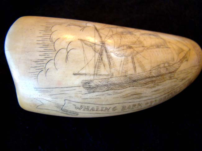 click to view larger image of A late 19th or early 20th century Sperm whale tooth with whaling scene and the Whaling Bark 'Florence.'