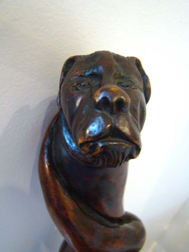 click to view larger image of A fabulous 19th century carved walking stick with dog's head knob circa 1875