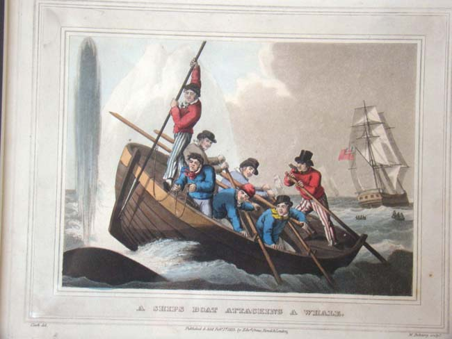 click to view larger image of A wonderful set of four early 19th century hand colored whaling engravings published in 1813