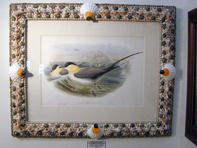 click to view larger image of Fine 19th Century Hand Colored Lithograph of Shore Birds By Gould and Richter in a Shellwork Frame