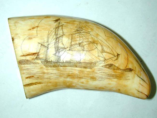 click to view larger image of A Fine and large 19th Century American Scrimshawed Whale's Tooth with both sides depicting a whaling ship circa 1850