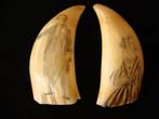 click to view detailed description of A beautiful pair of 19th century scrimshawed whale's teeth